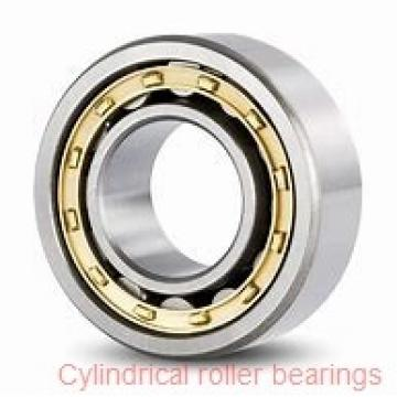 35 mm x 72 mm x 17 mm  SIGMA N 207 cylindrical roller bearings