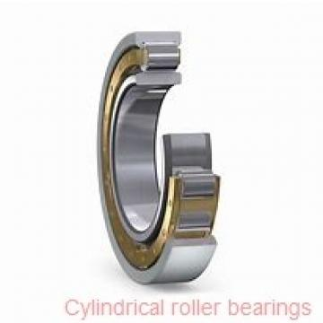 100 mm x 250 mm x 58 mm  NSK NU 420 cylindrical roller bearings